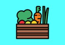 healthy vegetables illustration