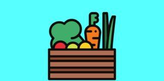 healthy vegetables illustration